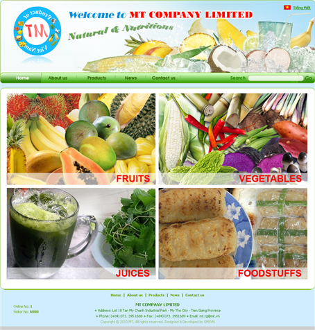 Thiet Ke Website Cong Ty MT Co Ltd
